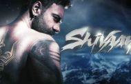 समिक्षा : एक्शन र इमोशनले भरिपूर्ण छ अजय देवगनको 'शिवाय'